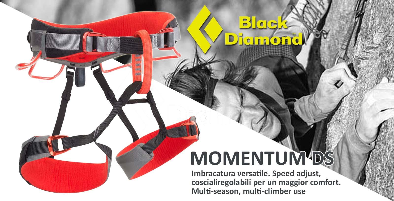 bd-momentum-ds