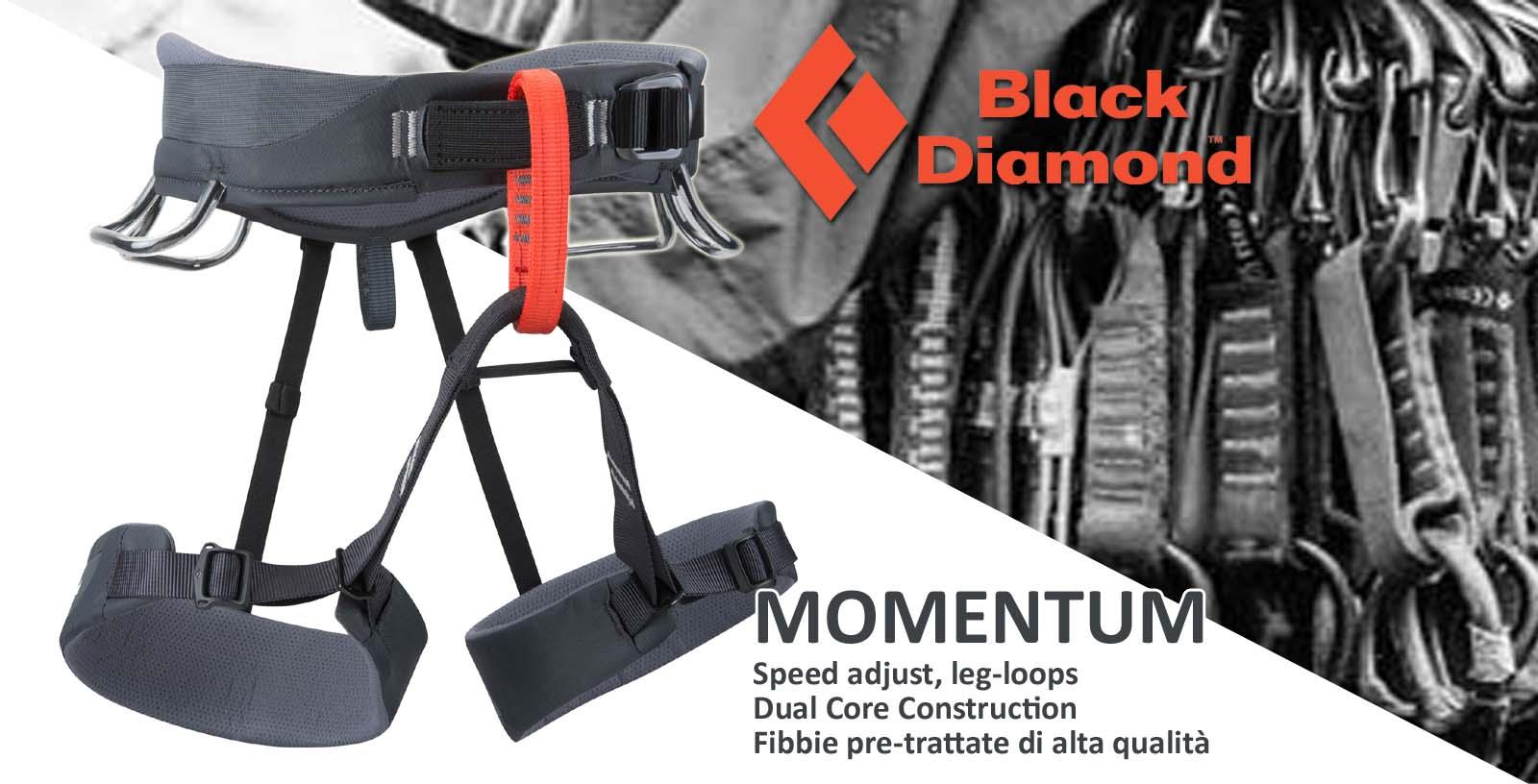 bd-momentum