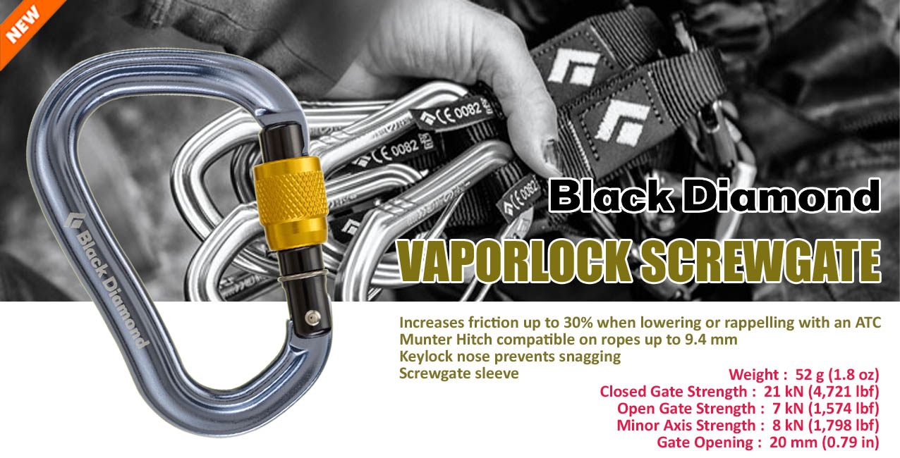 BD Vaporlock Screwgate