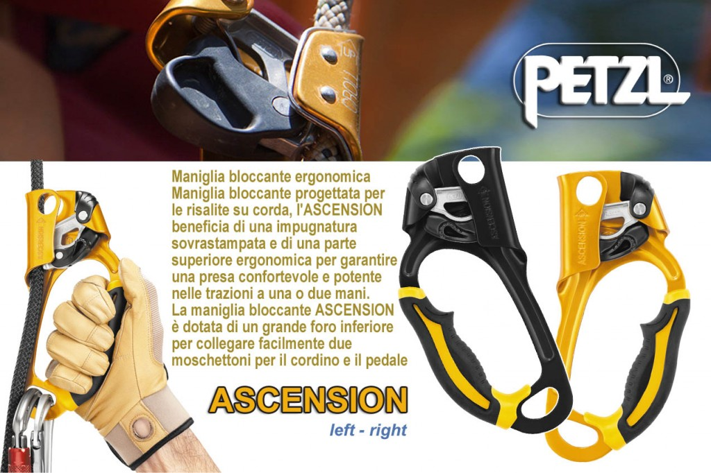 Petzl Ascension