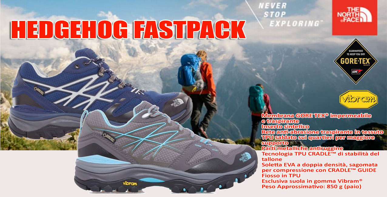 TNF Hedgehog Fastpack GTX 2